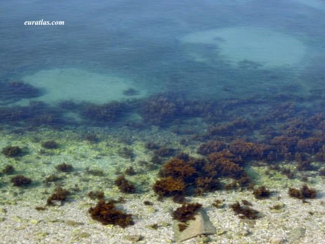 Click to download the Dalmatian Sea