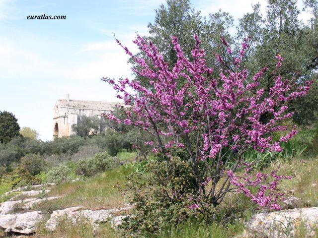 Click to download the Saint-Gabriel, where stood the Roman Ernaginum