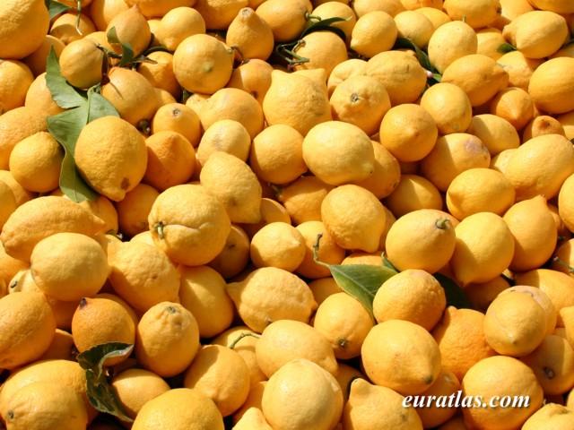 Cliquez ici pour télécharger Golden Lemons