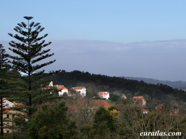 Click to download the Countryside near Sintra