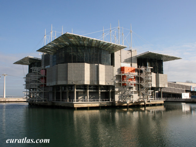 Click to download the The Lisbon Oceanarium