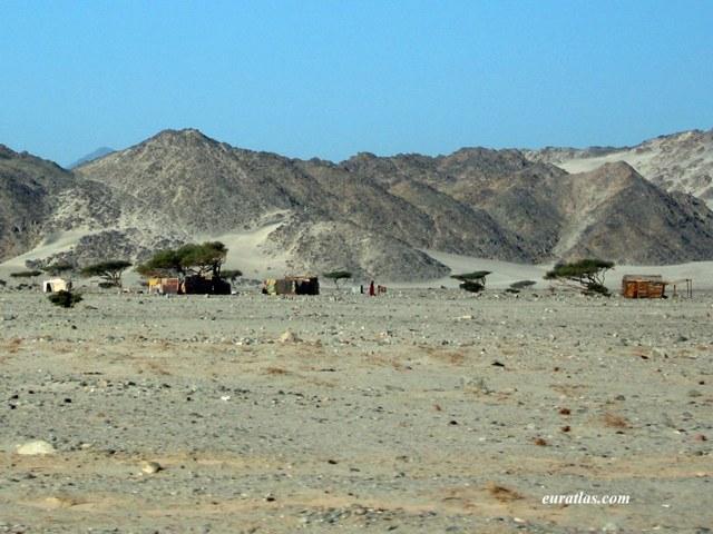 Cliquez ici pour télécharger A Beduin Camp