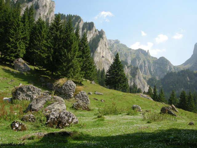 Click to download the The Gaura Valley , Bucegi Mountains
