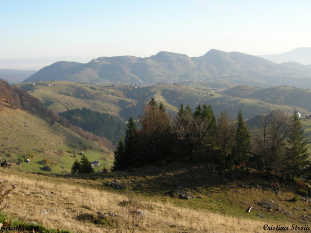 Click to download the Countryside, Bran-Rucar Pass, Piatra Craiului Mountains