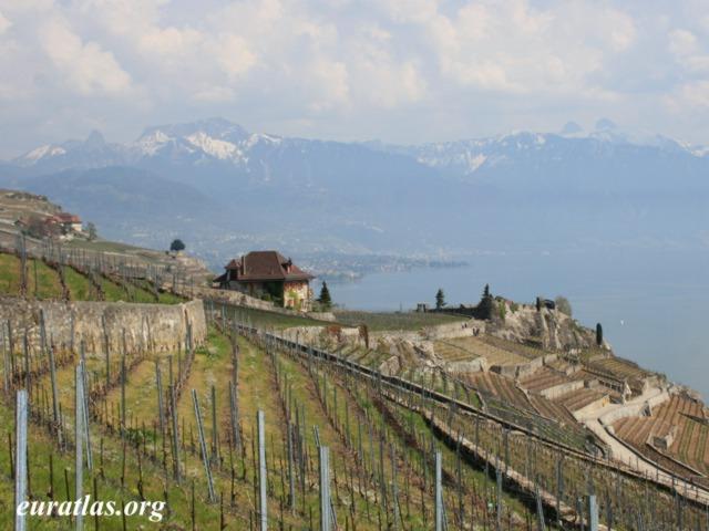 Cliquez ici pour télécharger Montreux, Vevey