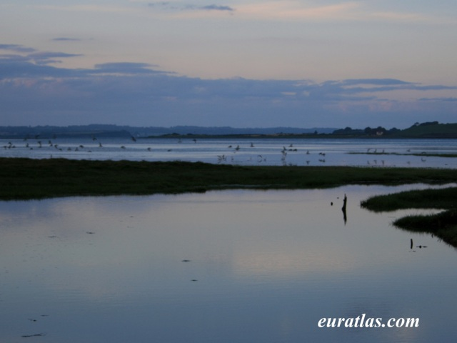 Cliquez ici pour télécharger Foryd Bay, near Caernarfon