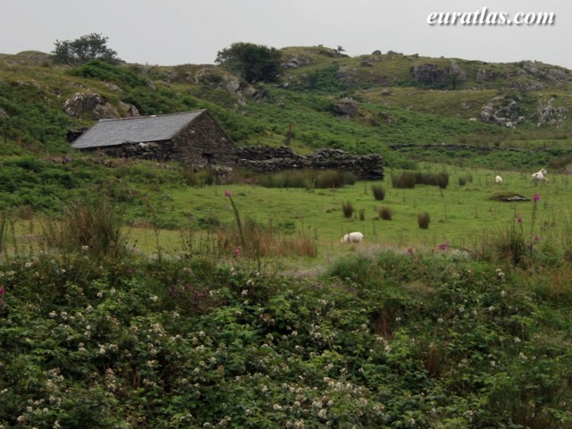 Click to download the A Sheep Barn at Rhyd Ddu